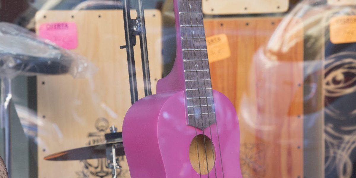 Amplio catálogo de Guitarras